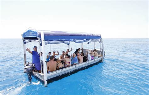 cairns glass bottom boat reef tours glass bottom boat tour cairns cruise