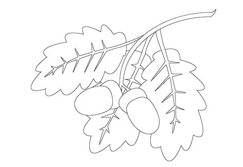 coloring pages oak leaf leaf coloring pages for preschool activity shelter