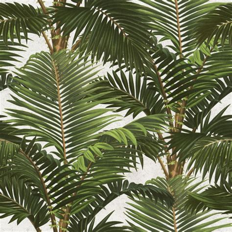 tropical wallpaper jardin tropical wallpaper by mindthegap