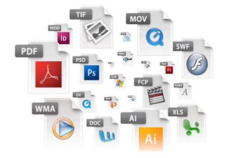 video file format in multimedia tecnologia e informatica sexto manejo de archivos