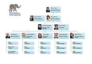 board of directors organizational chart template org chart exles from orgchartpro