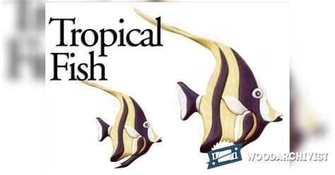 tropical fish intarsia projects woodarchivist