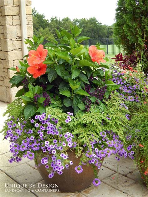design flower planters 1077 best summer containers images on pinterest plants
