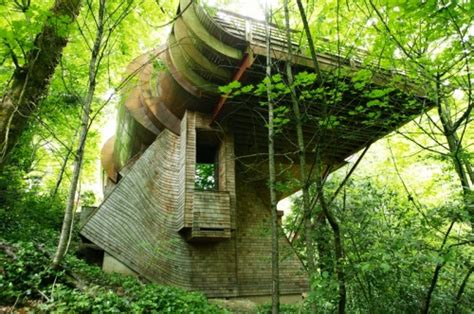 frank lloyd wright organic architecture what is organic architecture franklin lloyd wright