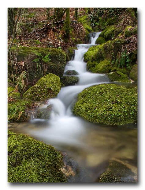 monte aloia nature park wallpaper monte homeactive us arroyo en el parque natural monte aloia pontevedra flickr