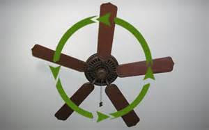 Ceiling Fan Summer Rotation How To Use A Paddle Ceiling Fan Properly Today S Homeowner