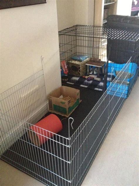 Rabbit Pen x pen crate rabbit housing cage