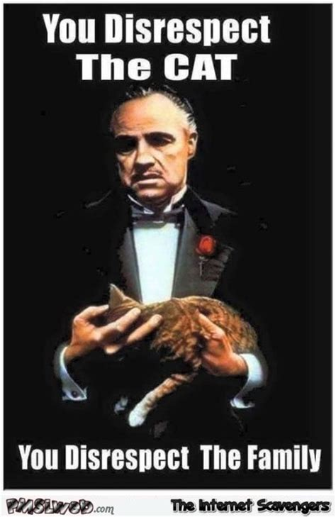 Godfather Memes - funny thursday picture gallery uproarious pics and memes