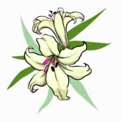 lily flower tattoo ideas clipart best