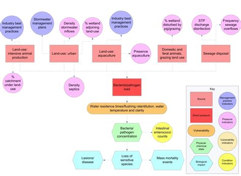 microbiology flowchart bacteria pathogens department of environment and science