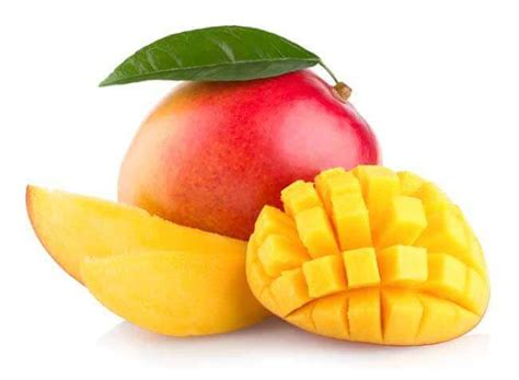 dogs eat mango can dogs eat mangoes