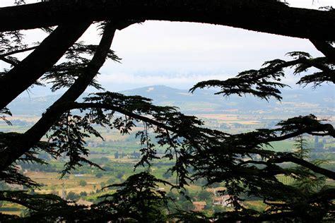 Soleil De Provence 5535 by Elevation Of Gordes Maplogs