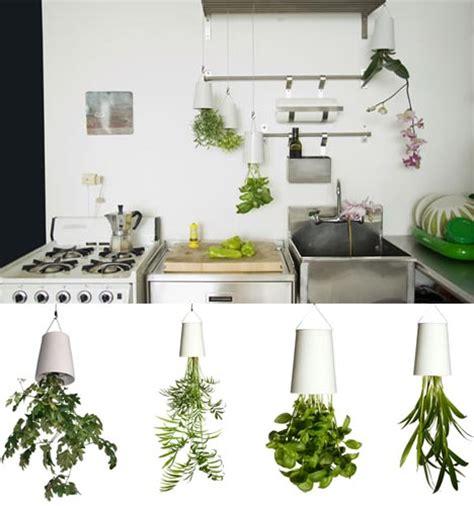 inverted indoor planter for hanging plants upside down
