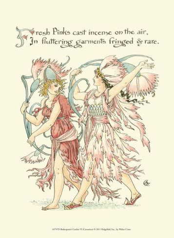 walter fiore soloillustratori walter crane i fiori