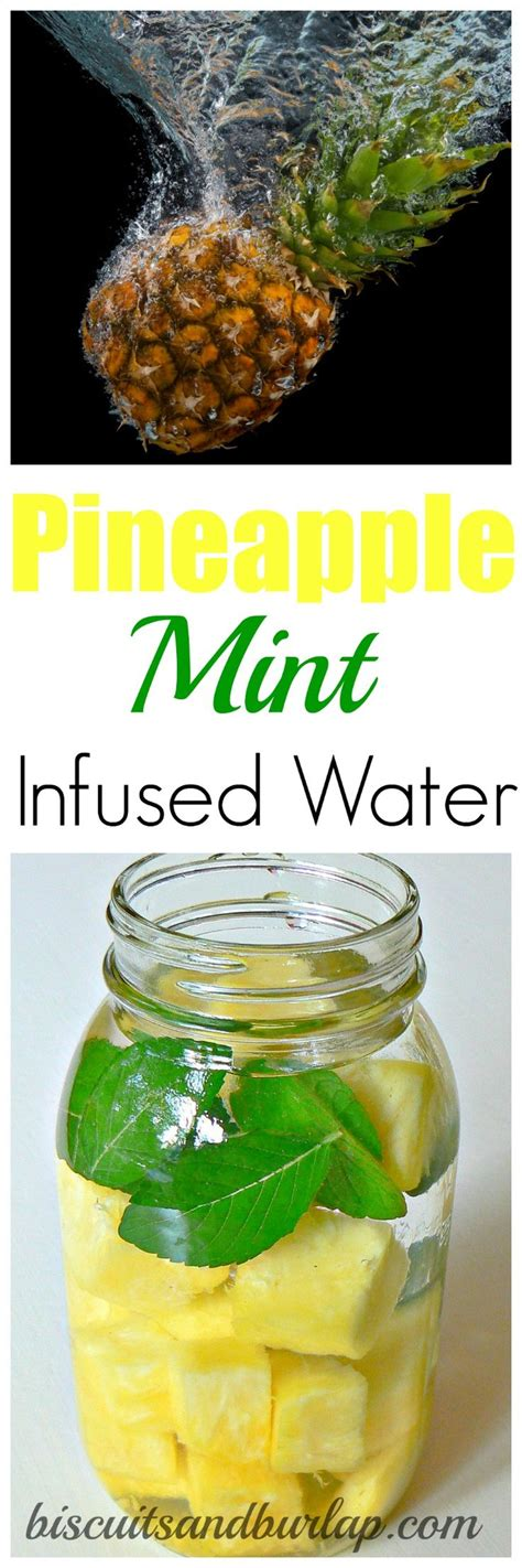 Infused Water Untuk Detox by 100 Infused Water Recipes On Flavored Water
