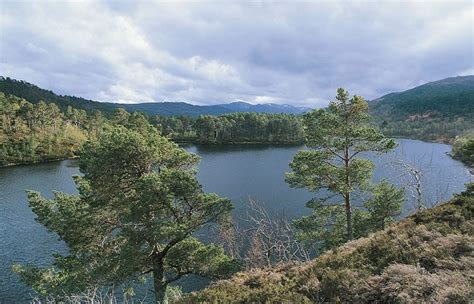 laird of glen affric pippa middleton will be lady of this 10 000 acre scottish