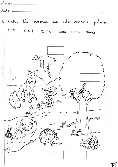1 Grade Science Worksheets by Virgen De La Cabeza Bilingual School March 2009