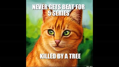 Warriors Memes - warrior cat meme www pixshark com images galleries