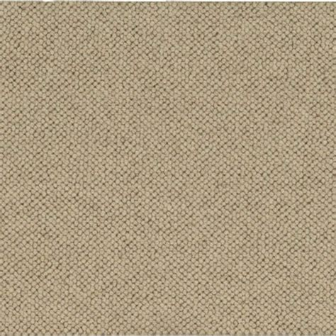oatmeal color platinum plus carpet sle ellsbury color oatmeal