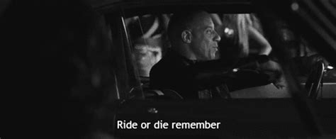 fast and furious quotes tumblr lol funny gifs best scene fast and furious sung kang cant