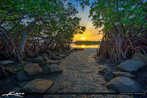 Florida House sunset between mangrove on singer island