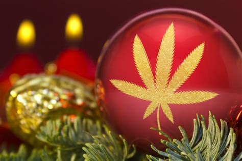 marijuana christmas ornament colorado cannabis calendar for december 2017 westword