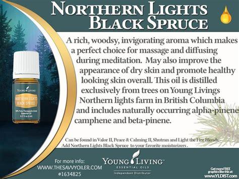 northern lights black spruce essential oil young living essential oils northern lights black spruce