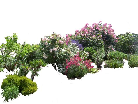 landscaping with flowers and shrubs flowered garden png 03 by montvalentstock on deviantart
