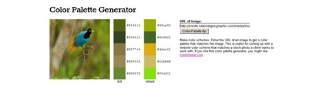 scheme generator 5 color tools for web design