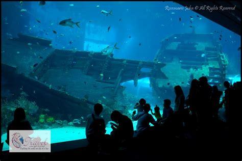 S.E.A Aquarium - The World's Largest Oceanarium