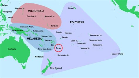 tonga on a world map tonga the diabetes heavy weight of the pacific world