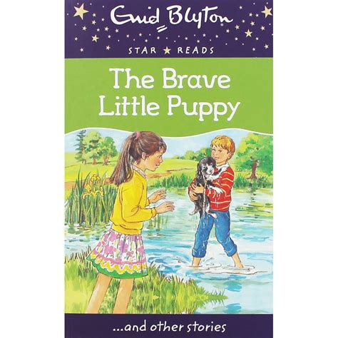 brave a personal story of healing childhood books the brave puppy by enid blyton children s stories