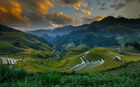 1000  images about Mu Chang Chai on Pinterest   Hd