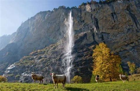 Mba In Travel And Tourism In Switzerland by Hiking In Bern Switzerland