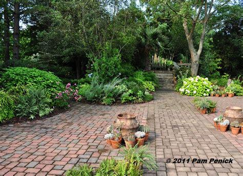 visit to plant delights nursery southwestern garden agave collection diggingdigging