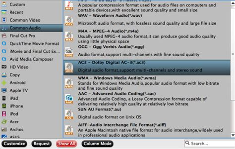 Audio Format Without Quality Loss | convert 5 1 wav to 5 1 ac3 without quality loss