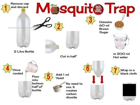 best mosquito trap best mosquito trap that really works info bohol