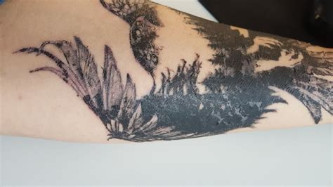 tattoo healing losing ink healing tattoo losses to much ink any advice big