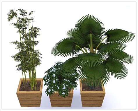 mod the sims 3 small potted plants mod the sims floor plants 1