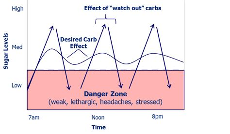 carbohydrates joint the effect of carbohydrates throughout the day central