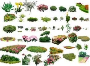photoshop landscape design planting google search