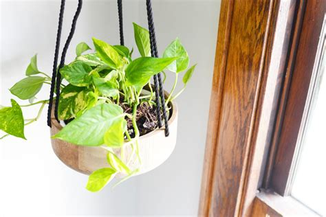 diy hanging planter diy hanging planters www imgkid com the image kid has it