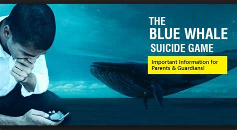 le iene porta a porta le iene il blue whale il gioco della balena porta al