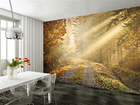 wall wallpaper murals wall mural autumn forest wallsorts