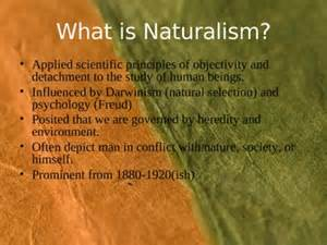 Naturalism In American Literature Essay by Pop Culture Exle Of Naturalism Kseamericanlitblog
