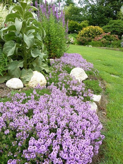 el jardin de flor baja quehagoyoaqui es organizar mi jard 237 n p 225 gina 17