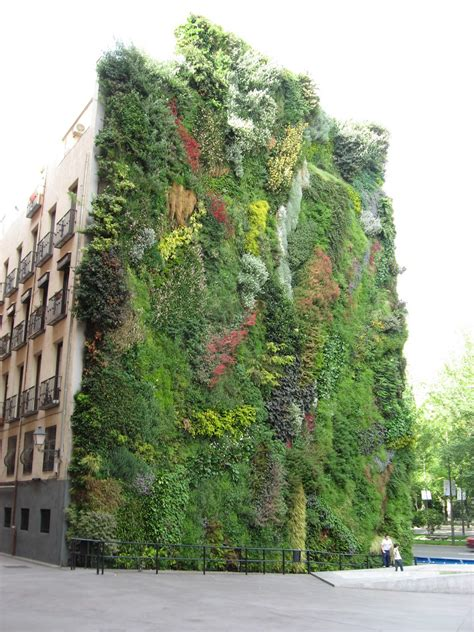Arnold S Outbursts Green Walls Green Wall Gardens