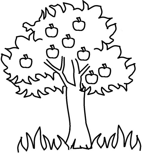 preschool coloring page of a tree apple tree coloring page for the kids pinterest