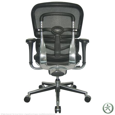 Raynor Chair Raynor Ergohuman Chair Mesh Chair With Leather Seat