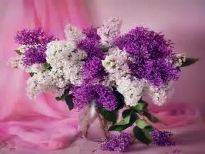 beautiful bouquet of flowers beautiful flower bouquet images 5